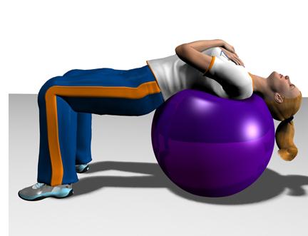 توپ ایروبیک جیم بال gym ball، فروش توپ ایروبیک جیم بال gym ball، خرید توپ ایروبیک جیم بال gym ball، فروش اینترنتی توپ ایروبیک جیم بال gym ball، خرید اینترنتی  توپ ایروبیک جیم بال gym ball.