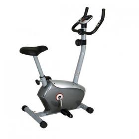 دوچرخه ثابت 6518